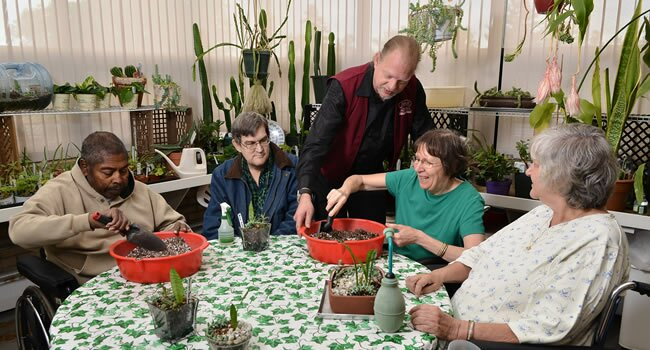 Horticultural Therapy at BRMC